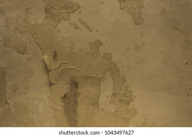 Blank aged paper sheet as old dirty frame background with dust and stains. Front view. Vintage and antique art concept. Detailed closeup studio shot. Sepia toned