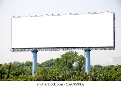 blank billboard on the sideway in the park. image for copy space, advertisement, text and object. white billboard in natural green.
