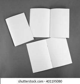 Blank brochure on grey background