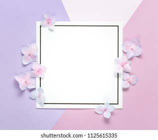 Blank card with flower petals on muticolored pastel background.