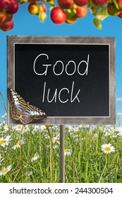 Blank chalkboard on a meadow with text Good luck