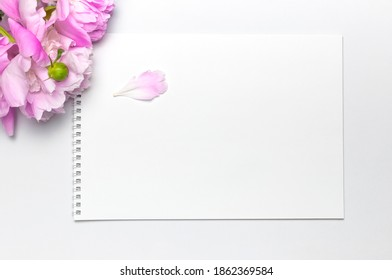 Blank clean white notepad album, beautiful pink peonies flowers on gray background. Top view flat lay copy space. Female desktop, woman working desk, breakfast, time for planning