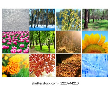 blank with different twelve colored images of nature for calendar. Ready photo for calendar