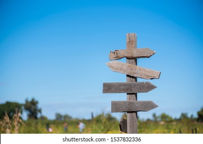 blank directional signpost in rural area with field blue sky background, pumpkin patch sign with people in the background picking out pumpkins, fall season, halloween pumpkins, copyspace, empty sign