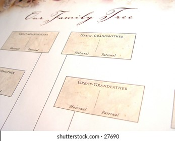 blank family tree different angle words stock photo edit now 27690