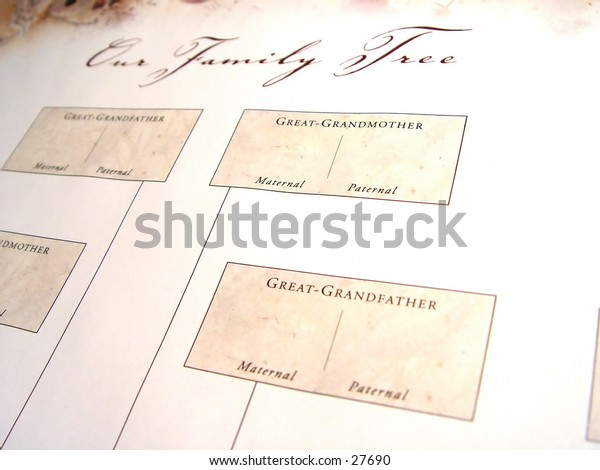 Blank Family Tree from a different angle, with words Our Family Tree