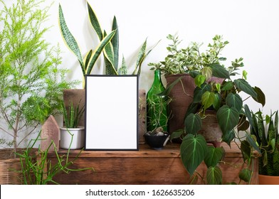 Blank frame poster with collection of plants on table at home. Tree lover and earth day concept