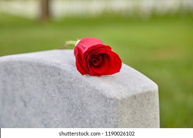 A blank headstone in a cemetery with rose on the top of the headstone and shallow depth of field