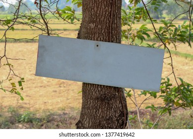 Sign On a Tree Stock Photos, Images & Photography | Shutterstock