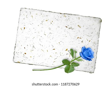 Blank for message with nice blue rose