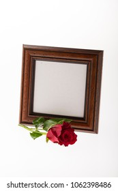 blank mourning frame with red rose on bright background for obituary card