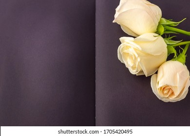 Blank open black diary (notebook, sketchbook) decorated with white roses with space for text or lettering. Concept of writing memoirs, reminiscence, life story. Composition for Memorial Day.