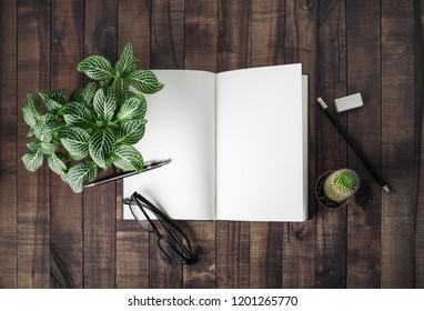 Blank open book, stationery and plants on wooden background. Flat lay.