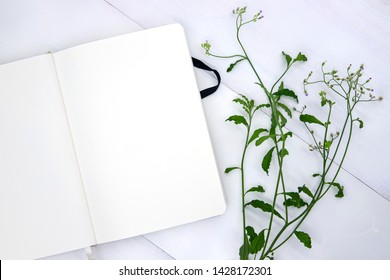 Blank page of sketchbook with green leaf. Open notepad top view photo on white background. Stylish romantic flat lay with white page for message and natural foliage. Spring or summer feminine template