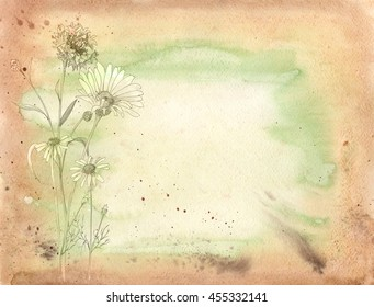 blank paper card with chamomile (daisy) and cornflower flowers, watercolor painting, on grunge background, vintage style