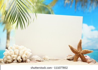 Blank paper card and seashells on sand beach.