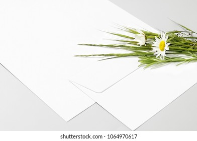 Blank paper, envelope and spring flowers