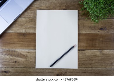 Blank paper with a pencil and plant on a wooden desk