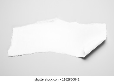 Blank paper scrap with scrolled edge