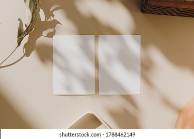 Blank paper sheet cards with mockup copy space in flowers sunlight shadows on beige background. Flat lay, top view minimal business brand template