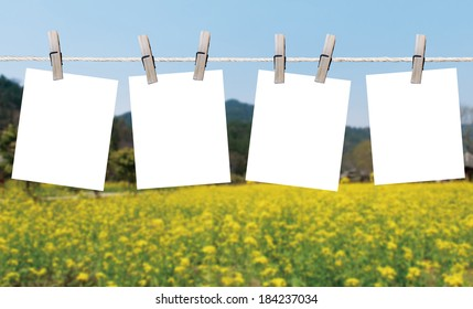 Blank pieces of paper hang on clothesline on sky background
