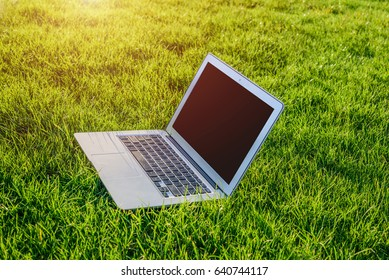 Blank screen of the laptop in the green grass.