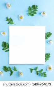 Blank sheet of white paper laying over green leaves and fresh daisy flowers arranged in a pattern
