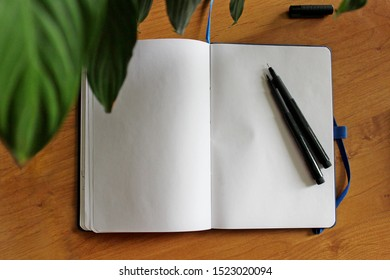 Blank sheets of sketchbook with brushpen on the table. Notepad mock up for your picture. Open sketchbook with pens, green plant leaves, top view