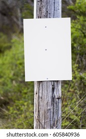 A blank sign on a telephone pole awaits your announcement, ad or message.