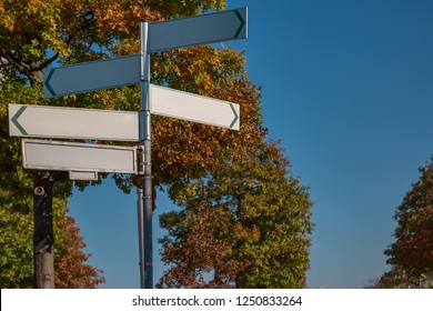 Blank signpost in different directions in the autumn