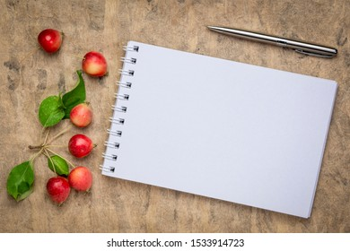 blank spiral art sketchbook against textured bark paper with fresh crab apples, fall holidays greeting card concept