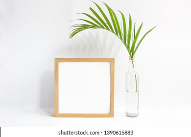 blank square frame with palm leaf