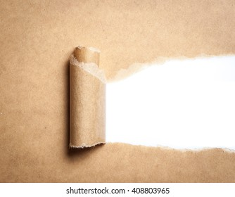 Blank torn brown paper with space for text on white background,copy space