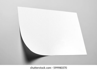 Blank wall note with curled corner over gray background