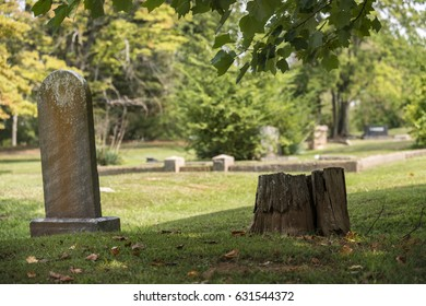 Blank weathered tombstone in the shadows by an old tree trunk stump in a cemetery with a shallow depth of field
