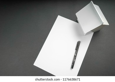 Blank white paper,pen and home replica