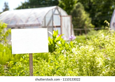 A blank white sign sits in the foreground in front of summer garden greenhouses in a community garden.