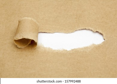 Blank white space in torn brown paper.