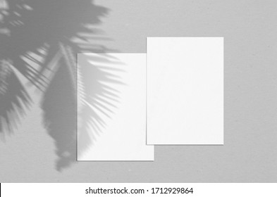 Blank white vertical paper sheet 5x7 inches with palm shadow overlay. Modern and stylish greeting card or wedding invitation mock up.