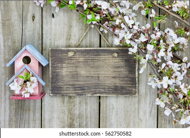 Blank wood sign by pink and teal blue birdhouse and spring tree blossoms hanging on rustic antique wooden background; springtime background with white flowers and copy space
