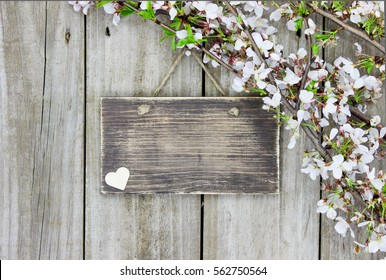 Blank wood sign with country heart and spring tree blossoms hanging on rustic antique wooden background; springtime background with white flowers and copy space
