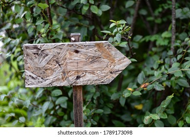 Blank wooden direction board against green foliage background