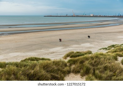 Blankenberge, Flanders / Belgium - 10 30 2018: Large sandy beach and green dunes at the Belgian North sea during ebb tide in autumn.