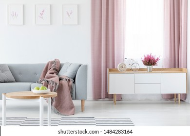 Blanket on grey couch in elegant living room interior with white wooden cabinet and coffee table, striped carpet and lilac curtains, real photo
