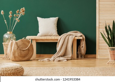 Blanket and pillow on wooden bench in green apartment interior with pouf, bag and plants. Real photo
