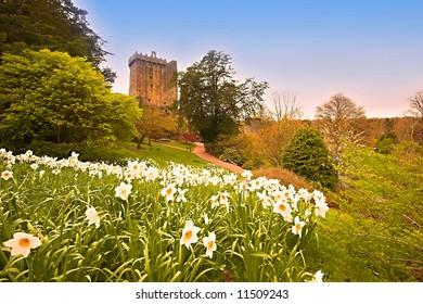 Blarney Castle and garden Co.Cork, Ireland