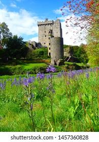 Blarney Castle, Ireland in the spring