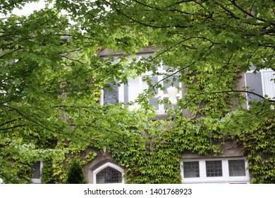 Blarney, County Cork, Republic of Ireland - May 3, 2019: A portion of the Blarney Woollen Mills building covered in ivy