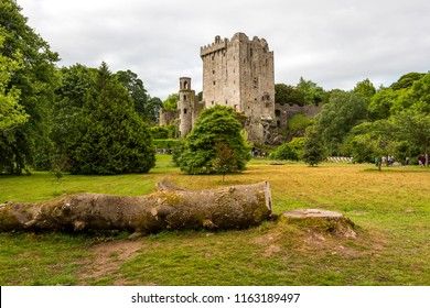 Blarney. Ireland. 06/16/2018 Blarney Castle in the middle of a blooming park.