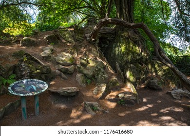 Blarney, Republic of Ireland - August 16th 2018: A cave in the beautiful grounds of the historic Blarney Castle, known as Witch's Kitchen.